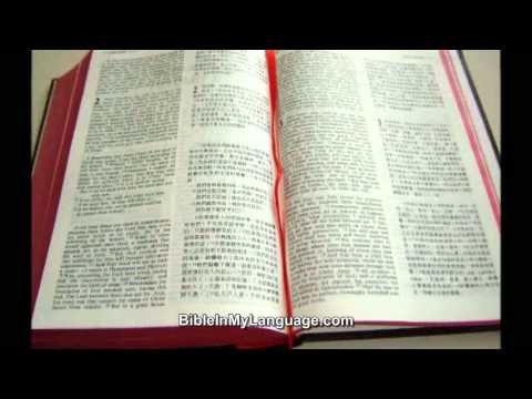English - Chinese Bilingual Bible / KJV - Chinese Union Version with New  Punctuation / Hardcover