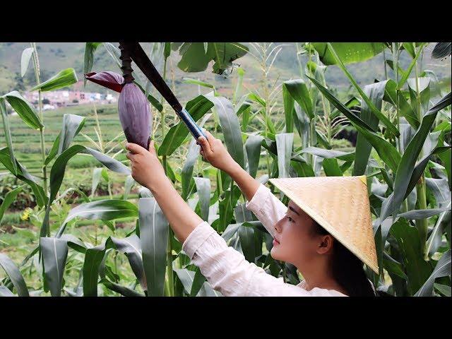 凉拌芭蕉花,中国饮食文化真是博大精深,芭蕉花还能这样吃【滇西小哥】