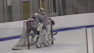 UMass Boston Women's Goalie Coach Molly Schaus Prepares For 2014 Olympic Games