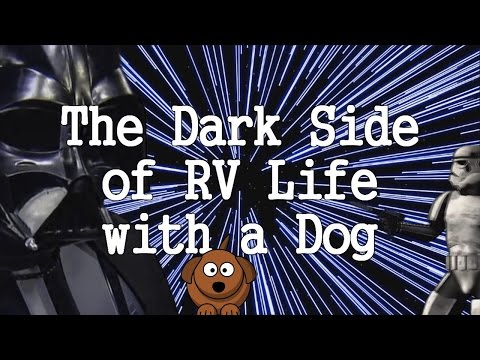 The Dark Side Of RV Life With A Dog