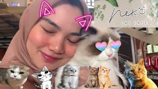 MAIN KE CAFE KUCING TERBESAR TERLENGKAP TERMEWAH DI INDONESIA ! NEKO CAT CAFE di LEMBANG PARK N ZOO!