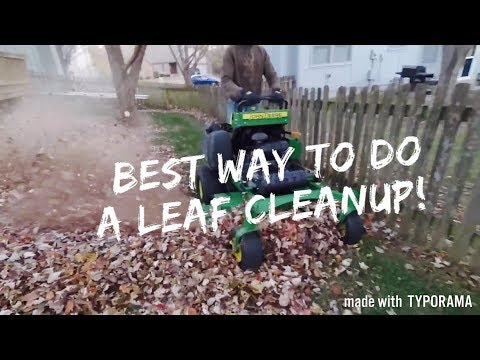 How To Do A Leaf Clean Up Quickly and Efficiently!