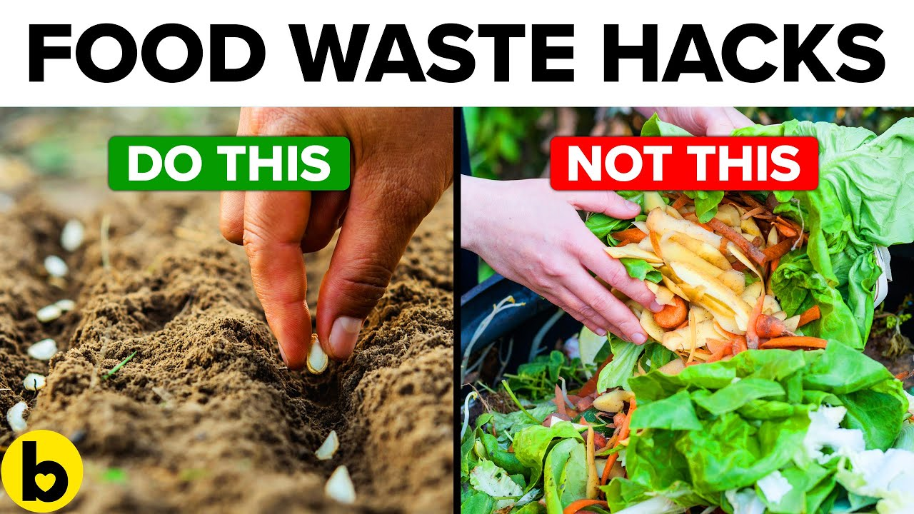 15 Innovative Ways To Use Food Scraps And Stop Wastage