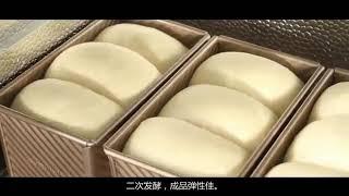 업소용 가정용 다기능 제빵 빵 청국장 발효기 요거트