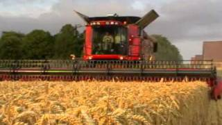 case ih axial flow the king