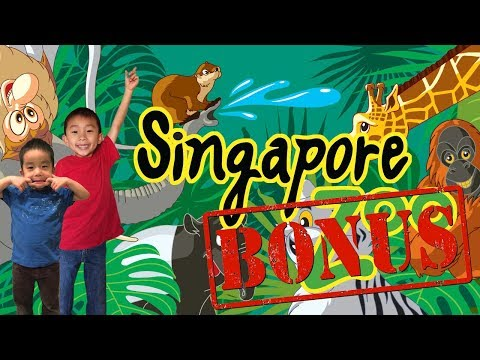 Singapore Zoo River Safari