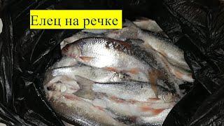 Рыбалка на реке в глухозимье Горбуново 15 01 20