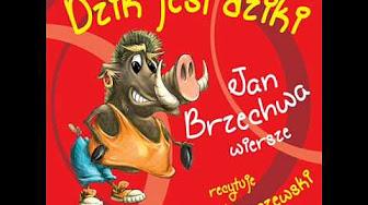 Popular Julian Tuwim Jan Brzechwa Videos Youtube