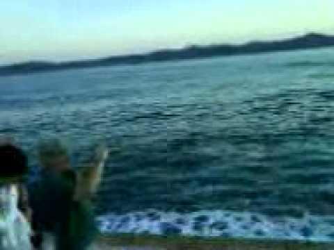 Море волнуется, морской орган шумит