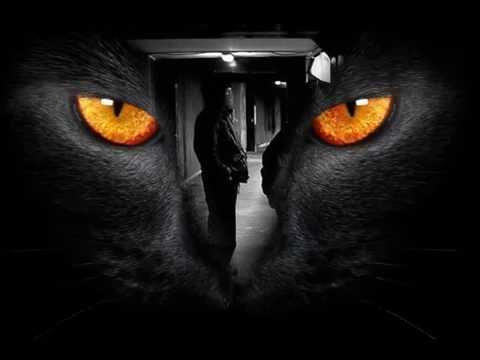 Omar & The Howlers - Black Bottom  (Videoclip) (HQ)