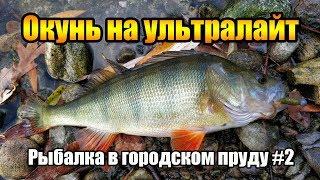 Ловля окуня на ультралайт в октябре. Рыбалка 2018 в гродском пруду #2