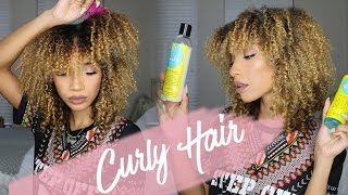 Curly Hair Routine | Wash N' Go ft. Blueberry Bliss | RAVEN ELYSE