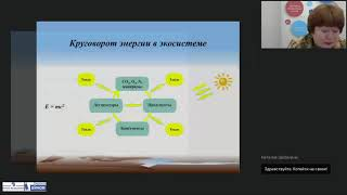 Формирование экологического мировоззрения у дошкольников в соответствии с ФГОС ДО