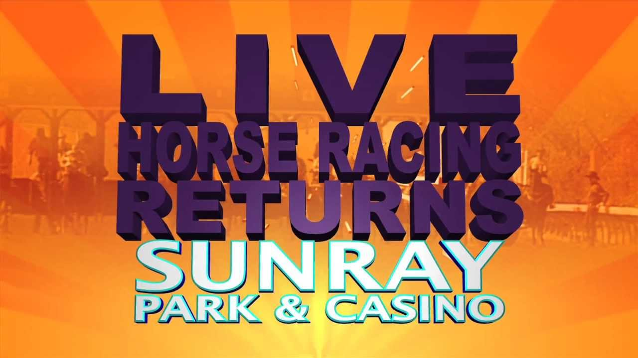 Sunray park casino how to read sports gambling odds
