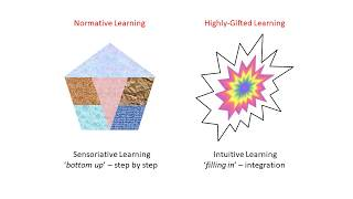 Highly-Gifted Learning