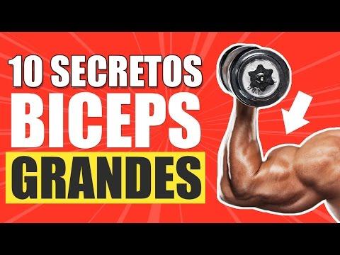 10 SECRETOS PARA UNOS BICEPS GRANDES