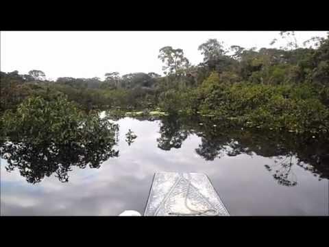 Traveling down the Tahuayo River, Amazon, Peru