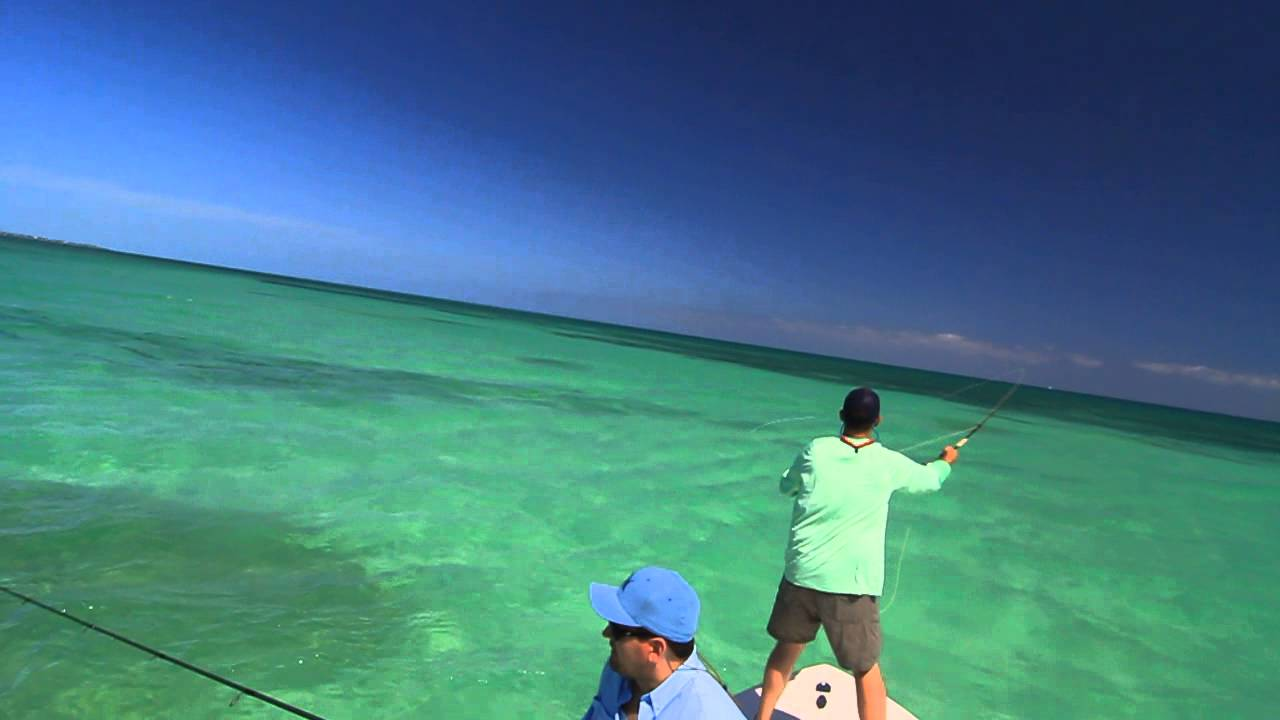 Tarpon school marathon florida keys fly fishing youtube for Out of state fishing license florida