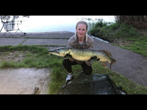 20lb Pike Fishing West Coast Lochs Scotland May 2018