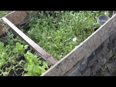видео: Умные грядки и советы дачникам огородникам