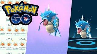 Karpador → Garados Entwicklung | Let's Play Pokémon GO Deutsch #030