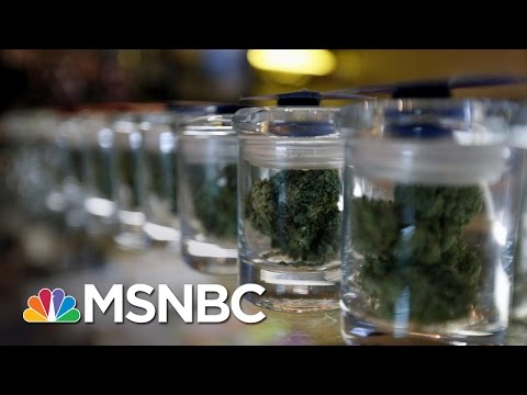Legal Marijuana Favored By Nearly 2/3 Of Americans | MSNBC