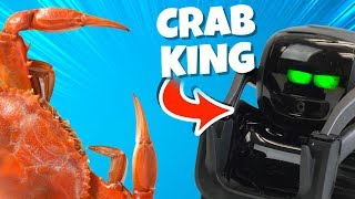 Wild Robot is the New Crab King
