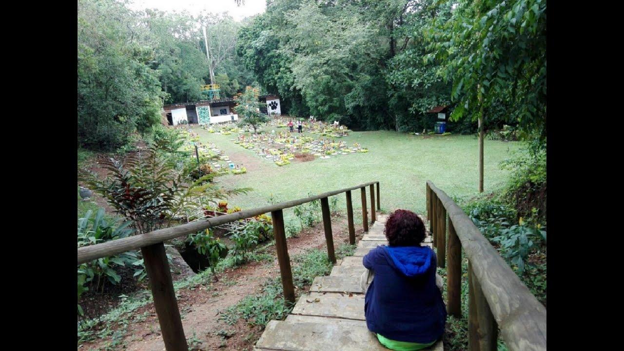 Mi primer día en cuarentena en Cali Colombia