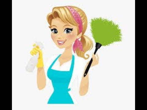 How To Do The Flylady Cleaning System For Newbies || Control in you Home With Flylady Kat || 2019
