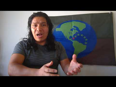 American Languages Incas Aztecs Tohonos mayas Metis Inuit mapuches One idea and Identity one Flag