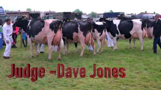 Ayr Show 2017.Bluegrass Harp-Champion of Champions and Holsteins (3rd lactation ) 4K thumbnail