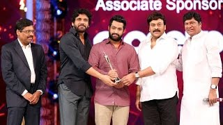Jr NTR Gets Best Actor Award for Temper Movie - Cine Maa Awards 2016 Stills