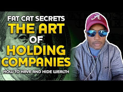 FAT CAT BUSINESS The ART Of HOLDING COMPANIES The VAST DIFFERENCE In Small Business And BIG BUSINESS