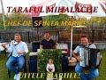 Download CRISTINA GRADINARU...UITELE MARIILE..CHEF DE CHEF LIVE!