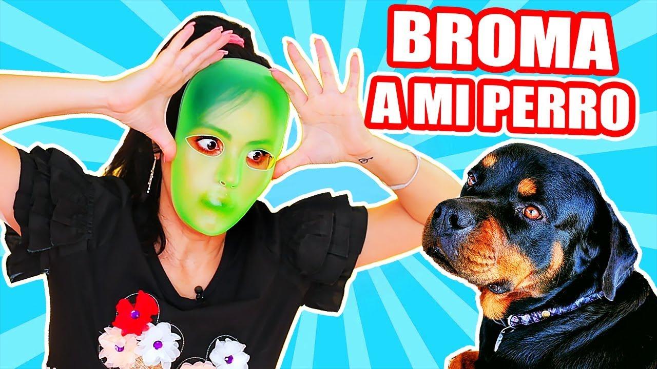 Finjo Ser Un Alien Asustando A Mi Perro Play Con Sandraciresart By Sandra Cires Art
