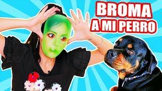 FINJO SER un ALIEN! Asustando a mi Perro! Play con SandraCiresArt