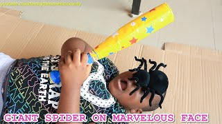 GIANT SPIDER ON MARVELOUS FACE (Family The Honest Comedy)
