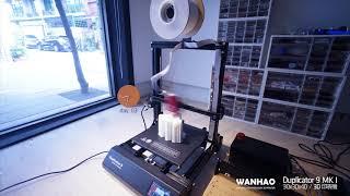 Wanhao Duplicator 9?96hrs stress printing test