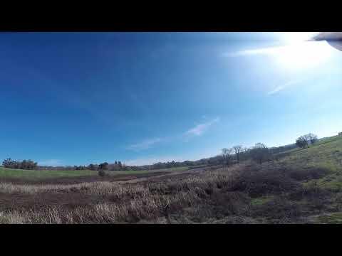 Shadow Creek Vineyards 2018-02-03