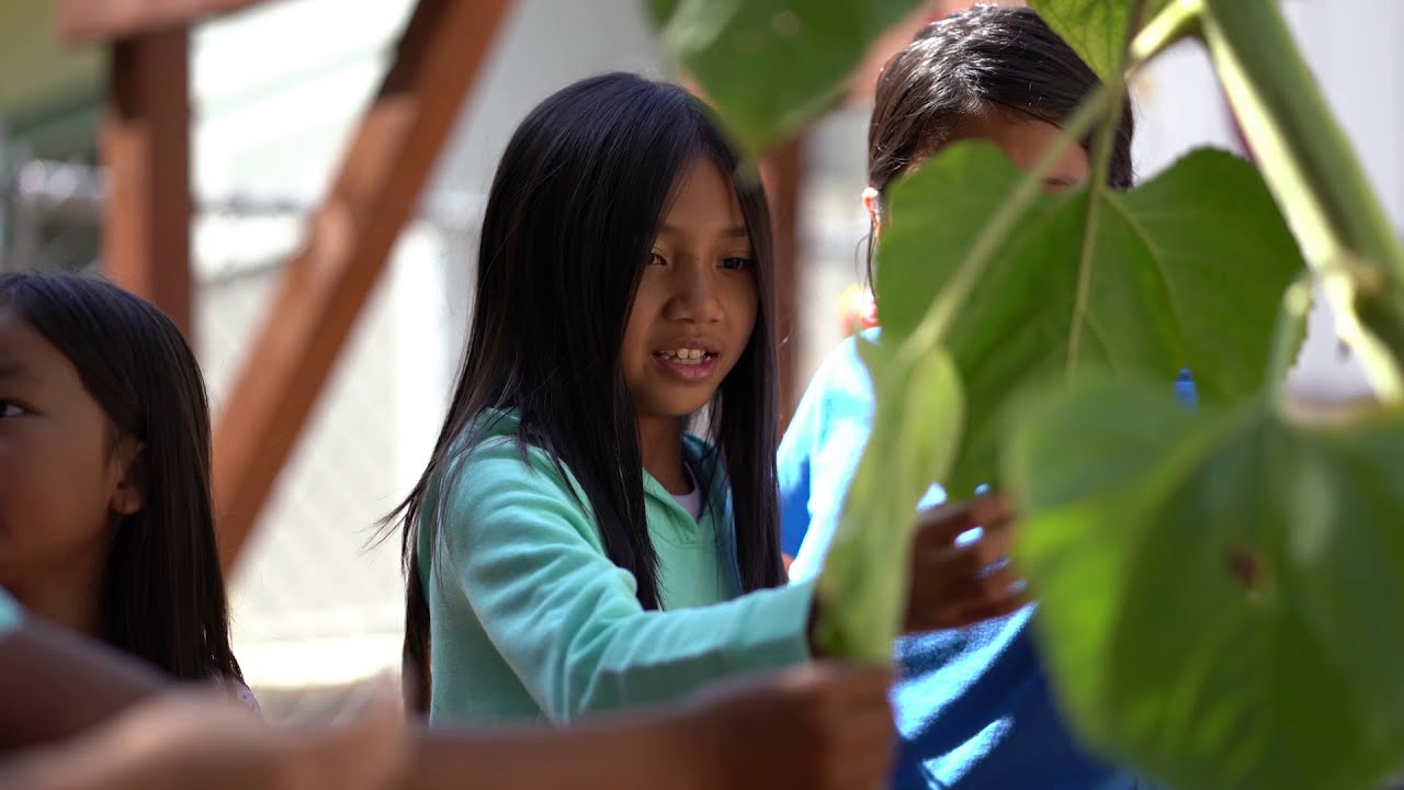 Elk Grove USD: Student Enrollment – Choose the Right School to Start Your Student's Academic Career