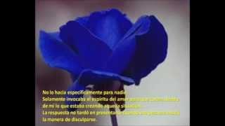 Repeat youtube video Ho'oponopono ,terapia de Amor Limpia y recibe