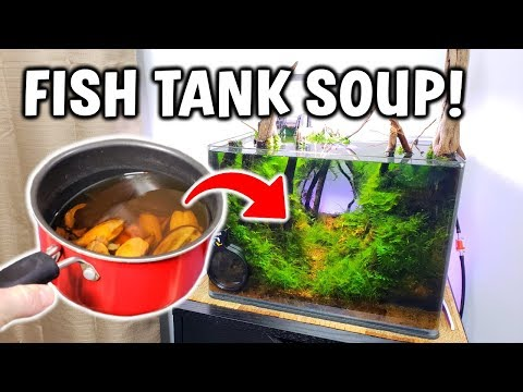 I Made FISH TANK SOUP... (here's Why)