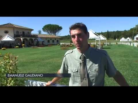 EMANUELE GAUDIANO INTERVISTA BY CLASS HORSE