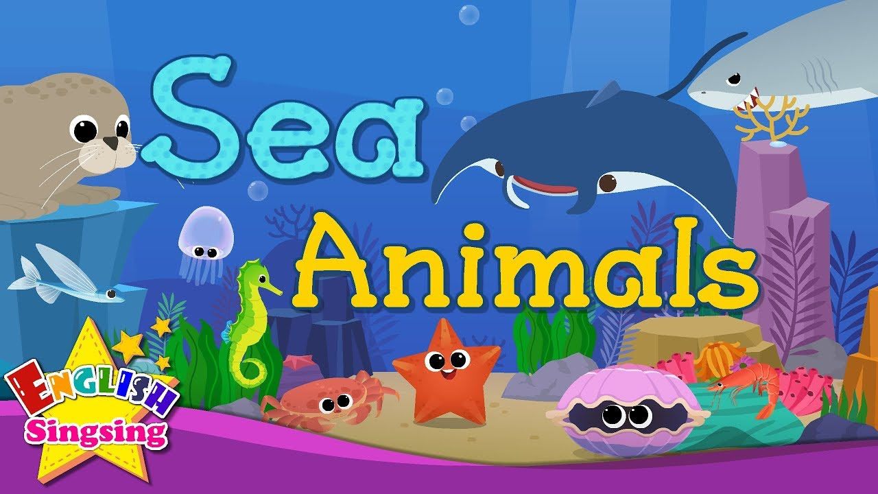 medium resolution of Kids vocabulary - Sea Animals - Learn English for kids - English  educational video - YouTube