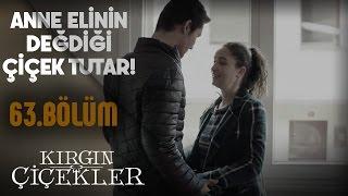 Video Kırgın Çiçekler 63.Bölüm - Güney'in Songül'e sürprizi! download MP3, 3GP, MP4, WEBM, AVI, FLV Oktober 2017