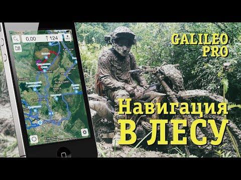Как не заблудиться в лесу. Galileo Pro