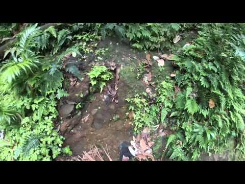 GoPro Hiking up Nevis' Peak
