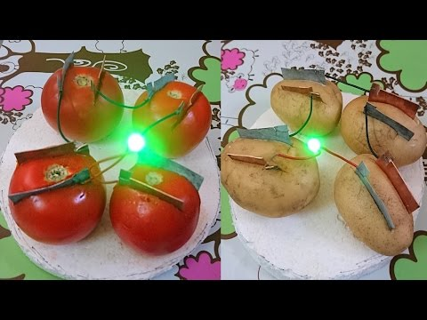 How to Produce Electricity using Tomato and Potato