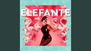 Download Elefante Mp3 and Videos