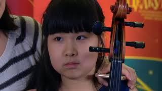 видео Отделение струнных инструментов